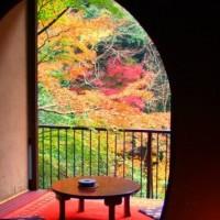 箱根和室旅館紫雲荘景色