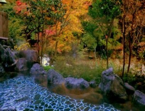 紫雲荘風呂からの景色
