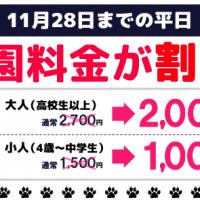 富士サファリパーク 料金割引クーポン